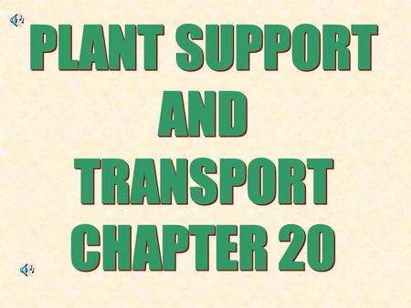 1.The two main jobs of the stem is: SUPPORT THE PLANT TRANSPORT FOOD AND WATER.