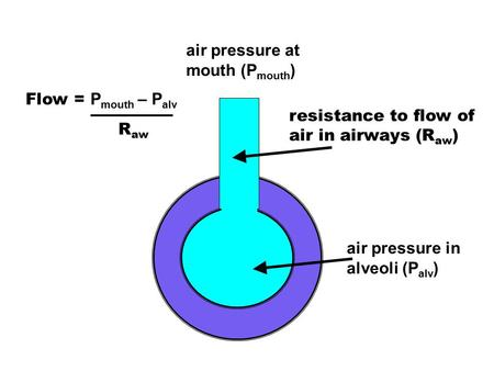 air pressure at mouth (Pmouth)