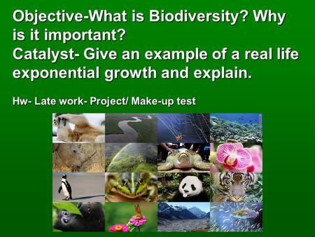 Objective-What is Biodiversity? Why is it important? Catalyst- Give an example of a real life exponential growth and explain. Hw- Late work- Project/ Make-up.