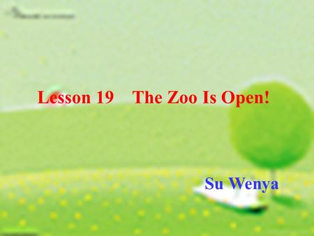 Lesson 19 The Zoo Is Open! Su Wenya. petsquirrelgoose duckgorilla zebra.