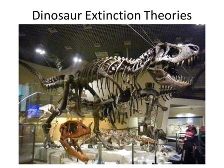 Dinosaur Extinction Theories. The K/T Extinction is one of the greatest mysteries of paleontology. What caused all non- avian dinosaurs to go extinct.