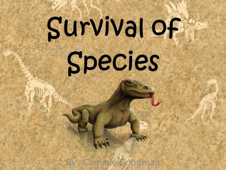 Survival of Species By: Cammie Goodman. Survival of Species You already know that every kind of living thing has adaptations that help it survive. But.