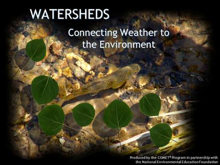 WATERSHEDS Produced by the COMET ® Program in partnership with the National Environmental Education Foundation Connecting Weather to the Environment.