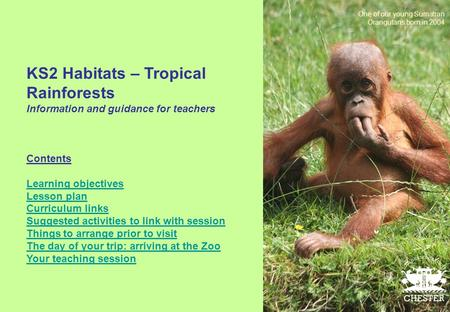 KS2 Habitats – Tropical Rainforests Information and guidance for teachers Contents Learning objectives Lesson plan Curriculum links Suggested activities.