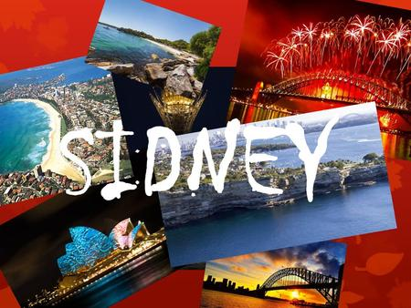 SIDNEY. Culture Sídney receives different festivals and some of the biggest social and cultural events of Australia.