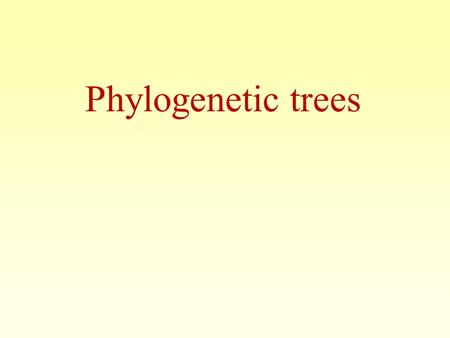 Phylogenetic trees. 2 Phylogeny is the inference of evolutionary relationships. Traditionally, phylogeny relied on the comparison of morphological features.
