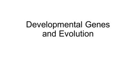Developmental Genes and Evolution. Studying genetic mechanisms of change can provide insight into large-scale evolutionary change There is a connection.