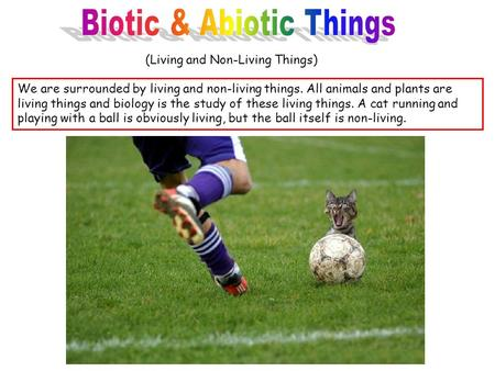 (Living and Non-Living Things) We are surrounded by living and non-living things. All animals and plants are living things and biology is the study of.