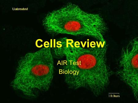 Cells Review AIR Test Biology Cell Theory 1.All living things are made up of cells. 2.Cells are the smallest working units of all living things. 3.All.