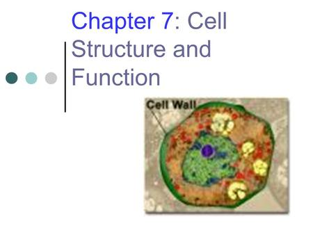 Chapter 7: Cell Structure and Function. 2 The Discovery of Cells Early 1600s Robert Hooke uses an early compound microscope to look at cork. Anton van.