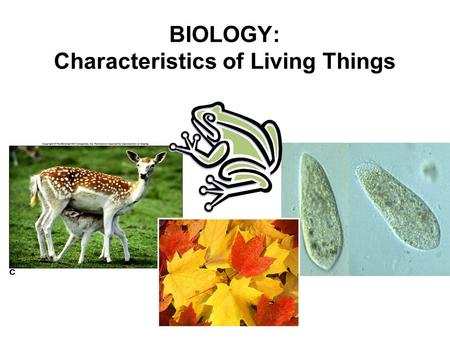 BIOLOGY: Characteristics of Living Things. 1. Living Things are Made up of Cells. CELL: Collection of living material enclosed within a barrier Cells.