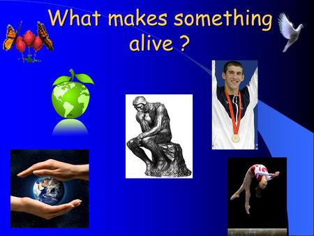 What makes something alive ?. What are living things? There are certain criteria that determine if something is living. Yes, ALL 7 criteria must be met.