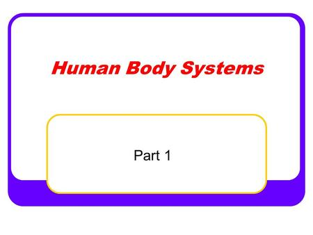Human Body Systems Part 1. Remember… All systems must work together in order to correlate all bodily functions Each body system is dependent upon on all.