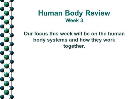 Human Body Review Week 3 Our focus this week will be on the human body systems and how they work together.