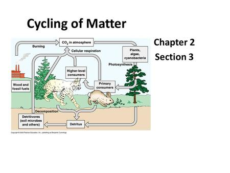 "Cycling of Matter Chapter 2 Section 3. Cycles in the Biosphere Matter cycles = Law of Conservation of Mass ""Matter is not created nor destroyed."" *Matter."