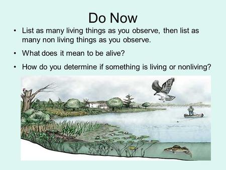 Do Now List as many living things as you observe, then list as many non living things as you observe. What does it mean to be alive? How do you determine.