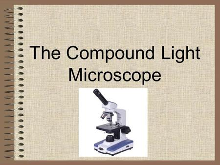 The Compound Light Microscope