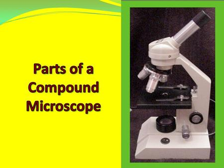 1. Eyepiece – 10x magnification Rotates to move pointer 2. Body Tube – carries image to ocular lens in eyepiece.