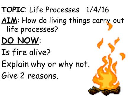 TOPIC: Life Processes 1/4/16 AIM: How do living things carry out life processes? DO NOW: Is fire alive? Explain why or why not. Give 2 reasons.