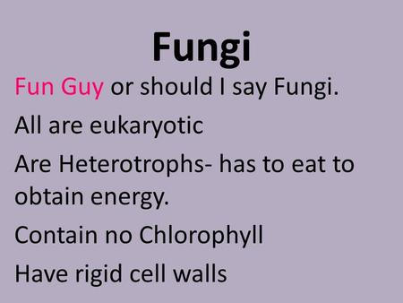 Fungi Fun Guy or should I say Fungi. All are eukaryotic Are Heterotrophs- has to eat to obtain energy. Contain no Chlorophyll Have rigid cell walls.