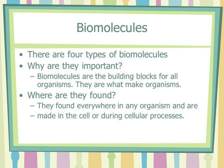Biomolecules There are four types of biomolecules Why are they important? –Biomolecules are the building blocks for all organisms. They are what make organisms.
