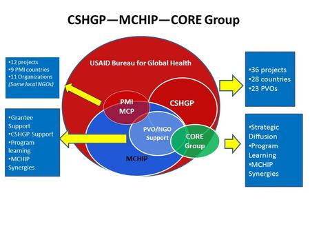 CSHGP—MCHIP—CORE Group USAID Bureau for Global Health CSHGP MCHIP PVO/NGO Support CORE Group 36 projects 28 countries 23 PVOs Grantee Support CSHGP Support.