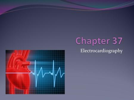 Electrocardiography. Anatomy of the Heart Circulation.