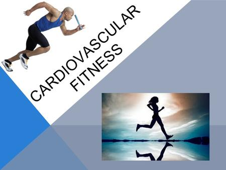 CARDIOVASCULAR FITNESS. ✧ The ability of the heart and lungs to supply oxygen to the muscles and ability of the muscles to use oxygen efficiently. ✧ 2.