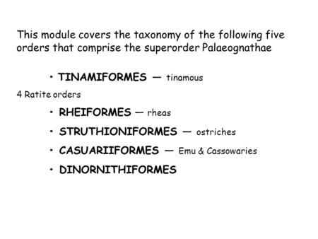 This module covers the taxonomy of the following five orders that comprise the superorder Palaeognathae TINAMIFORMES — tinamous 4 Ratite orders RHEIFORMES.