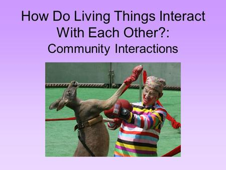 How Do Living Things Interact With Each Other?: Community Interactions.