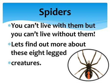  You can't live with them but you can't live without them!  Lets find out more about these eight legged  creatures. Spiders.