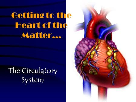 Getting to the Heart of the Matter… The Circulatory System.