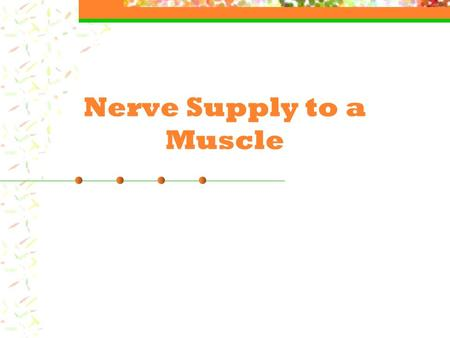 Nerve Supply to a Muscle. Nerve Supply Motor Neuron: Nerve that stimulates a muscle cell. A single nerve (motor neuron) will supply approximately 150.