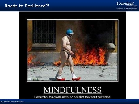 © Cranfield University 2011 Roads to Resilience?!.