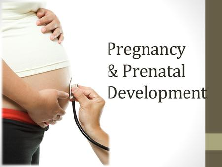 Pregnancy & Prenatal Development. Early Signs of Pregnancy _____________ period Fullness or _____________ in back and lower abdomen Feeling tired, drowsy,