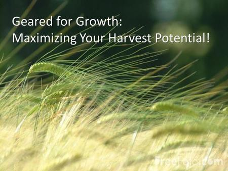 Geared for Growth: Maximizing Your Harvest Potential!