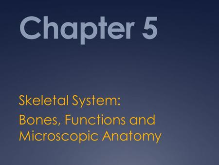 Chapter 5 Skeletal System: Bones, Functions and Microscopic Anatomy.