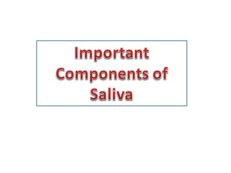 Important Components of Saliva