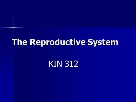 The Reproductive System KIN 312. Anatomy of the Male.
