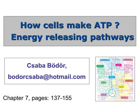 How cells make ATP ? Energy releasing pathways Chapter 7, pages: 137-155 Csaba Bödör,