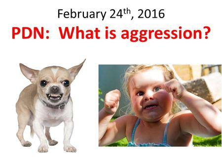 February 24 th, 2016 PDN: What is aggression?. Answer: Hostile or violent behavior or attitudes toward another; readiness to attack or confront. Aggressive.
