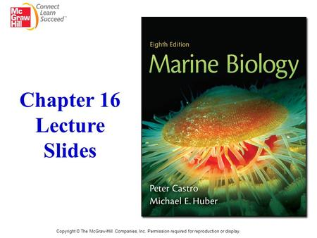 Chapter 16 Lecture Slides