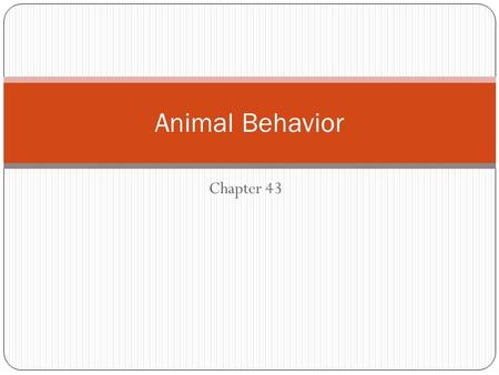 Chapter 43 Animal Behavior. Ethology: scientific study of how animals behave Two types of behavior Innate behavior is developmentally fixed meaning that.