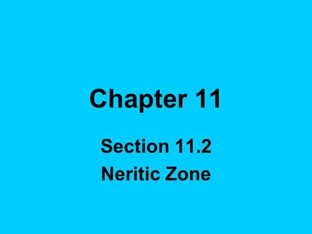 Chapter 11 Section 11.2 Neritic Zone. Continental shelf- shallow border that surrounds the continents.