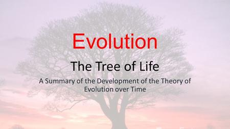 Evolution The Tree of Life A Summary of the Development of the Theory of Evolution over Time.