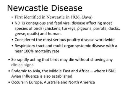 Newcastle Disease So rapidly acting that birds may die without showing any clinical signs Endemic to Asia, the Middle East and Africa – where H5N1 Avian.