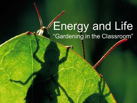 "Energy and Life ""Gardening in the Classroom"". Energy: ""Ability to do Work"" All devices need energy to do work. Most store energy in a rechargeable battery."