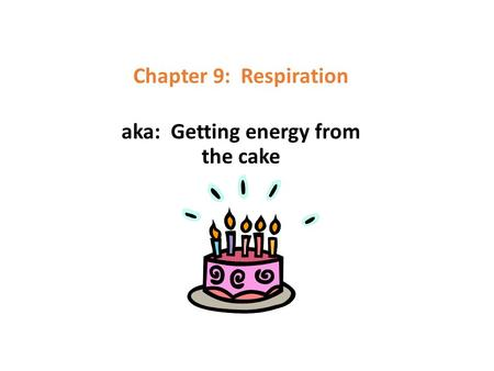 Chapter 9: Respiration aka: Getting energy from the cake.