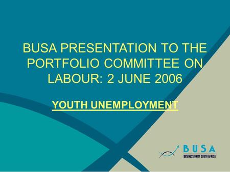 BUSA PRESENTATION TO THE PORTFOLIO COMMITTEE ON LABOUR: 2 JUNE 2006 YOUTH UNEMPLOYMENT.