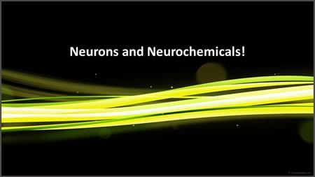 Neurons and Neurochemicals!. What is a Neuron Basic cells of the brain.